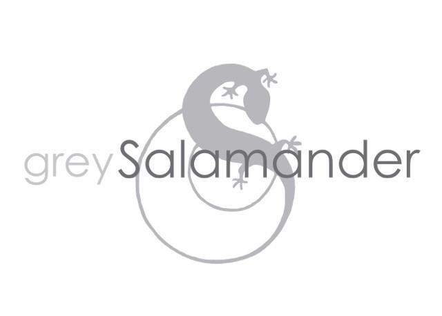 Grey Salamander