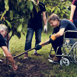 A man in a wheelchair gardens with friends. Illustrating that life continues after injuries sustained in a criminal assault.