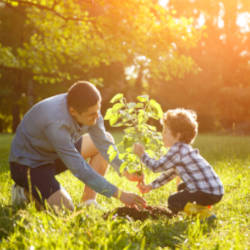 A Father and Son in the garden looking after a small tree - illustrating the importance of criminal injuries compensation after a criminal injury